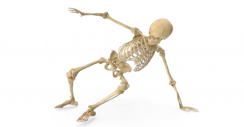 vitamin K2 a jeho význam pre name kosti